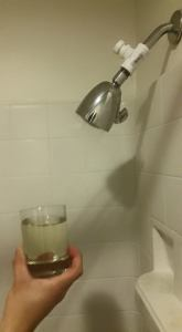 Our working shower fixture